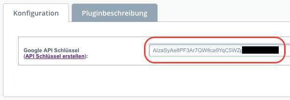 API-Schlussel-Plugin-Konfiguration