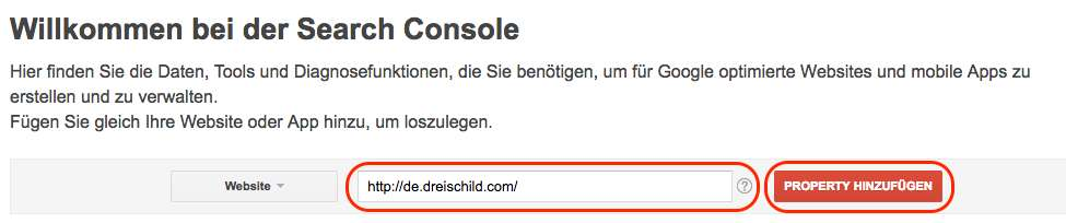 Domain-bei-Google-Search-Console-hinterlegen